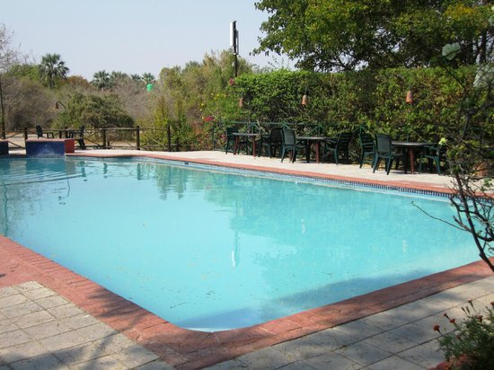 Sedia Riverside Hotel: Pool