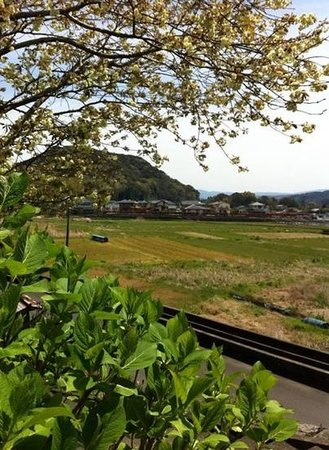 Japan Biking - Day Tours: view from a small temple near Hotoyoshi. A few weeks later these rice paddies will be planted