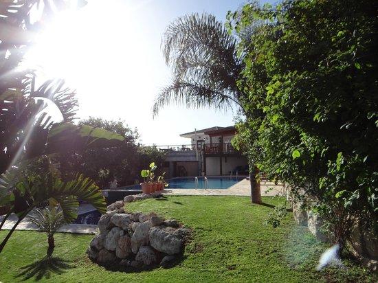 Paradisos Hills: pool & terrace