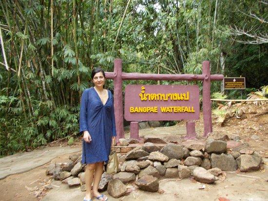Bang Pae Waterfalls : l'ingresso al parco
