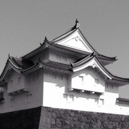 Shizuoka castle : Sunpu Castle Wow !!!