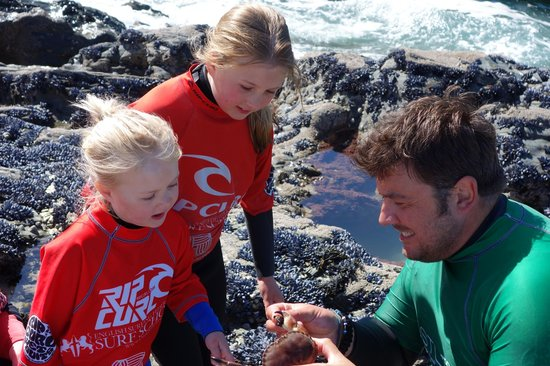 Rock pool ramble with Karl | Newquay Activity Centre