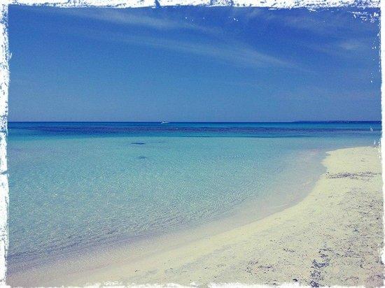 Playa de Es Trenc: Es Trenc. Abril 2014