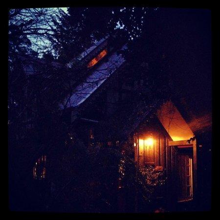 Forest Glade Olinda: Our cabin at dusk