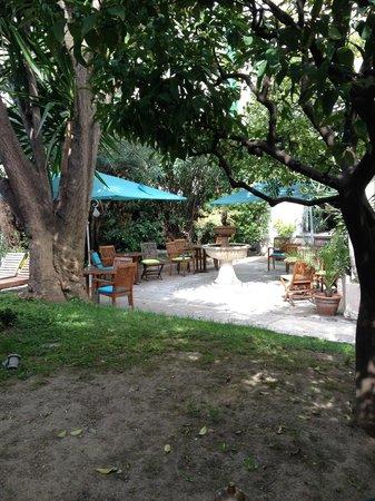 Hôtel Brice Garden : garden