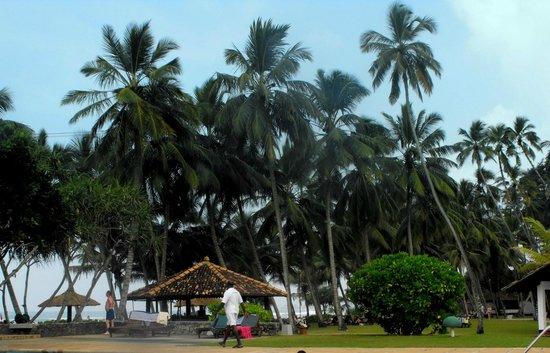AVANI Bentota Resort & Spa: Serendib Bentota