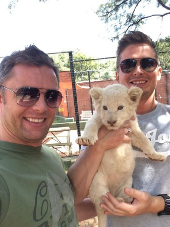 Thaba Eco Hotel: Lion cubs can be the cutest things....