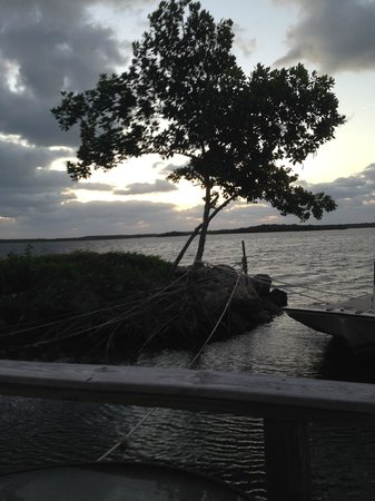 Key Largo House Boatel: the view from the sun deck