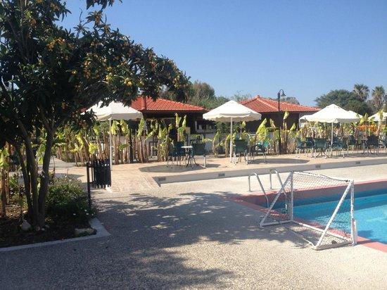 Irene Palace Beach Resort: pool bar