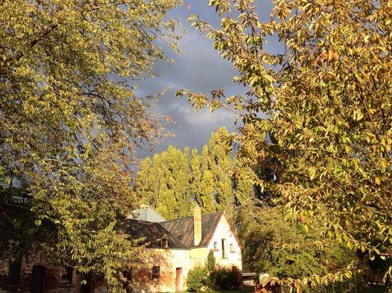 Redlands Estate: Autumn perfection at Redlands