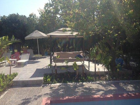 Irene Palace Beach Resort: gardens