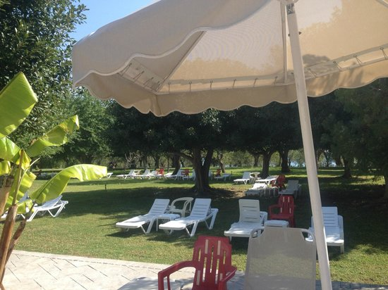 Irene Palace Beach Resort: masses of sun beds
