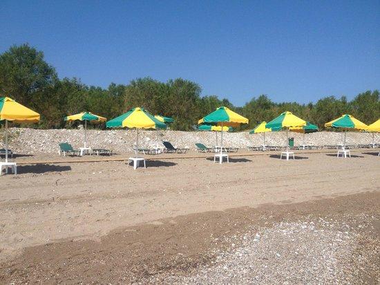 Irene Palace Beach Resort: beach
