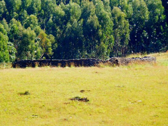 Waterval Boven, South Africa: Stone Circle Ruins