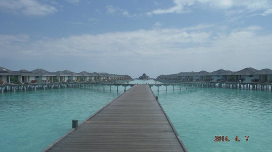 Sun Island Resort and Spa : sun island