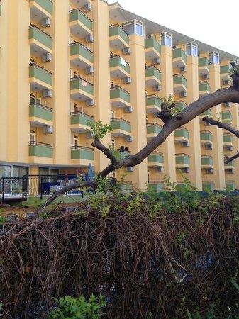Kleopatra Dreams Beach Hotel : framsida hotellet