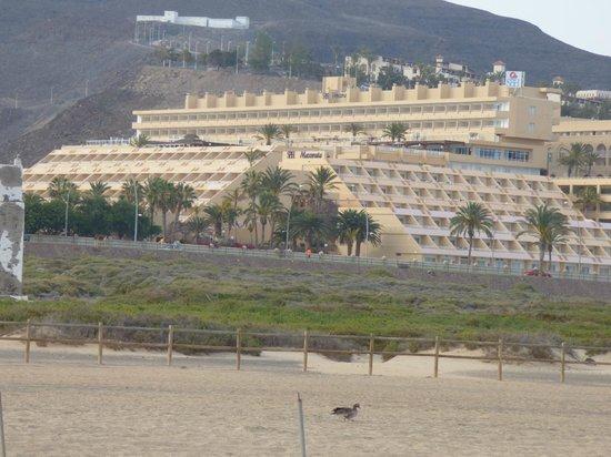 SBH Jandía Resort : widok z plaży