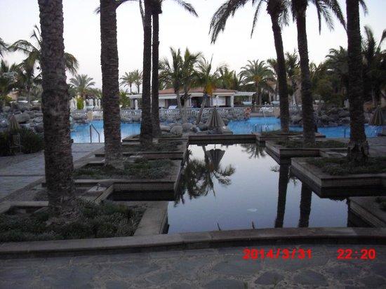 Palm Oasis Maspalomas: Palm gardens and pool area
