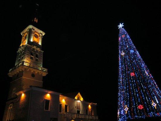 Kamenet's Podolsky Castle : Новогодняя елка