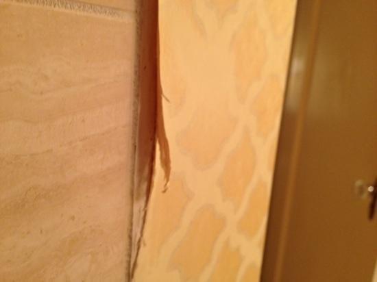 Omni Shoreham Hotel: bathroom in poor condition