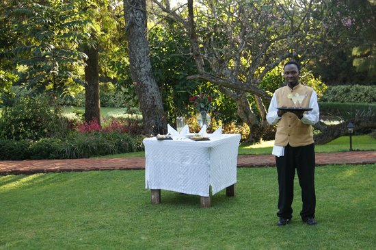 The Manor at Ngorongoro : Welcome Drink and Snacks