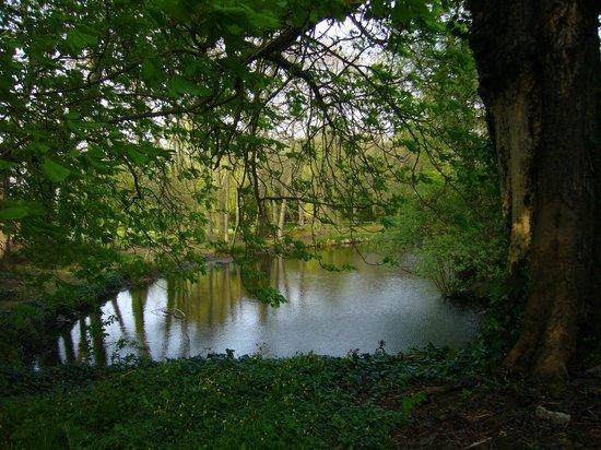 Manoir de Rigourdaine: Private pond on the Rigourdaine's grounds