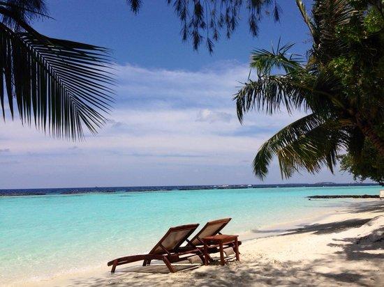Kurumba Maldives: 215 numaralı Odamızın önü :)