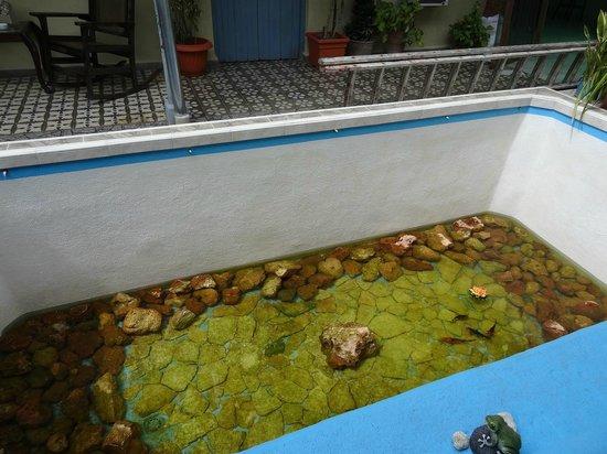 Hostal La Casona Jover: Vue de la chambre sur l'aquarium