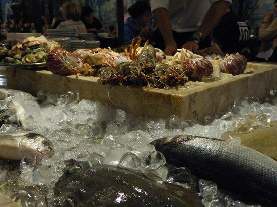 Leao d'Ouro: Verse vis op ijs voor die avond..