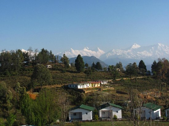 KMVN Tourist Rest House Chaukori: Himalayan View from KMVN Lawn