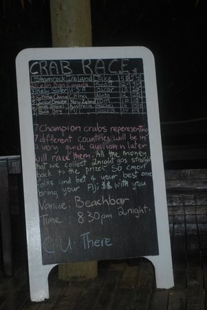 Malolo Island Resort: Crab races