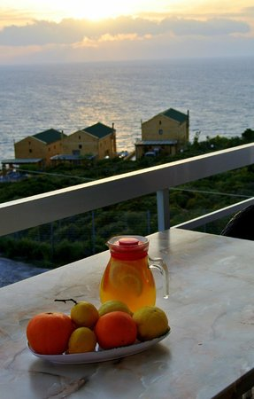 Villas Michalis: View from balcony, juice made with fresh fruit from the gardens