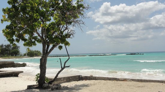 Hilton Barbados Resort: The other calmer beach.  Few people use it.