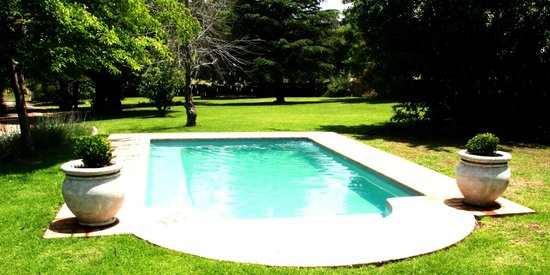 Under Elm Trees Guest House : Pool