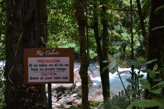 Rio Celeste Hideaway Hotel : Rio Celeste
