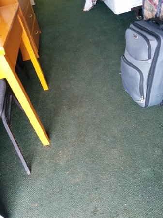 Northwoods Inn & Suites : Carpet