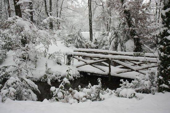 Charming Hotel Villa Soranzo Conestabile : Il parco in un freddo inverno.....