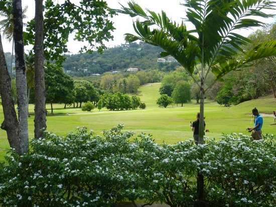Sandals Regency La Toc Golf Resort and Spa: View from the pro shop