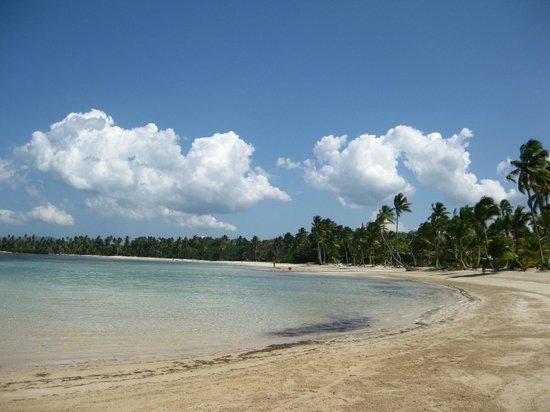 Grand Bahia Principe El Portillo : vue de la plage