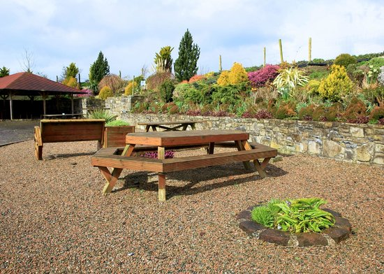 Bective Mill House B&B : Picnic area