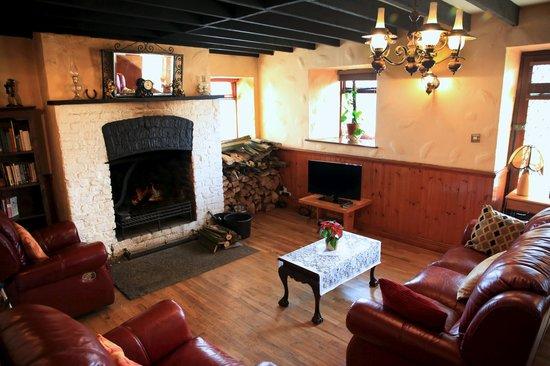 Bective Mill House B&B : living room