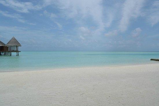 Anantara Dhigu MaldivesResort: пляж
