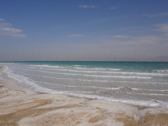 Ein Gedi Spa : Пляж