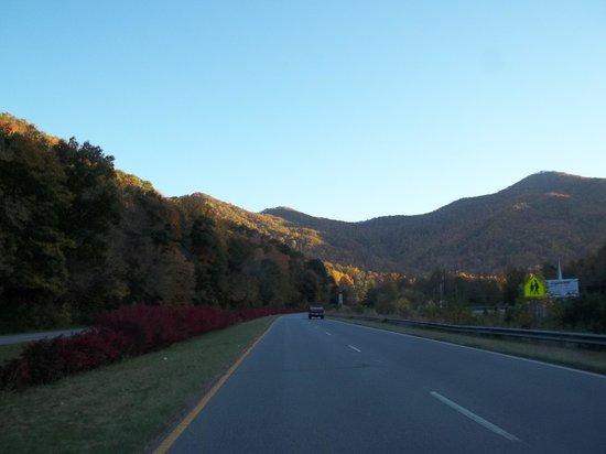Five Star Inn: Maggie Valley Beauty.