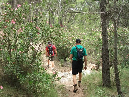 Hospederia la Mariposa: The trail continued through some oleander