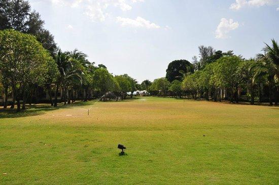 Layana Resort and Spa: Hotelgarten