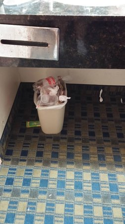 Econo Lodge: Overflowing garbage from night before