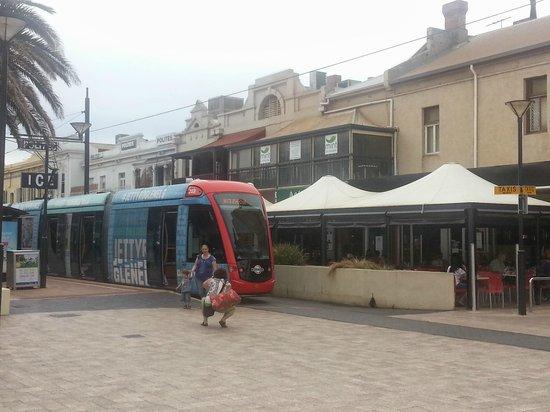 Glenelg Tram: Tram