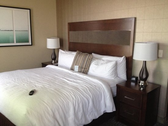 Embassy Suites by Hilton Springfield: King bed (King studio suite)