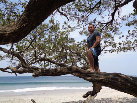 Costa Rica Private Tours: Just one of the many beautiful beaches that we visited.  That's hubby standing on the tree :)